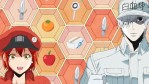 Cells at Work! annunciato lo Spin-Off