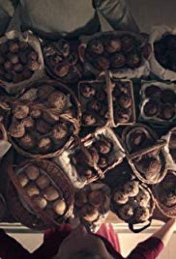 i muffins vogliono dire si Bear Witness