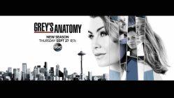 Grey's Anatomy 16: anticipazioni sul salto temporale ed una prima foto ufficiale