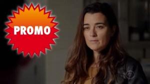 """NCIS 17x11 """"In The Wind"""": trailer promo e sneak peek, anticipazioni del prossimo episodio con Ziva"""