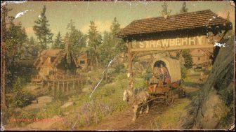 Strawberry Big Valley