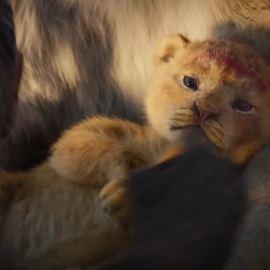 Il Re Leone – Nuovo teaser trailer e poster italiano del remake Disney!