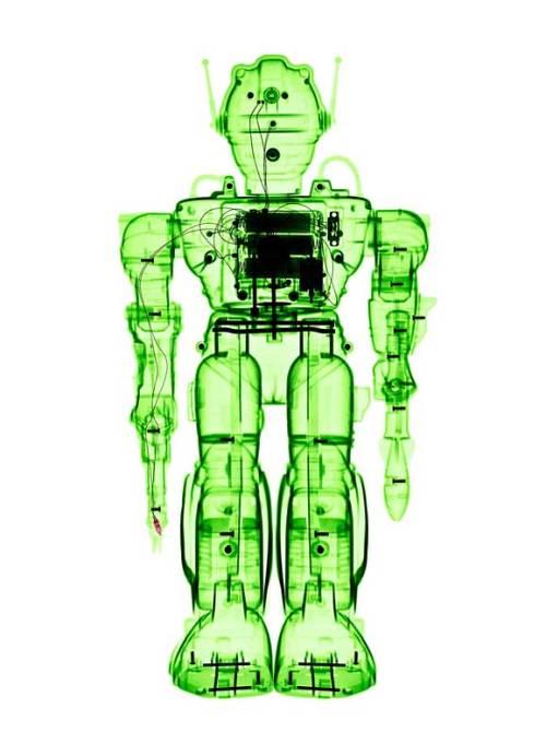 Lumas Art Now BRENDAN FITZPATRICK X-ray of a Toy Robot - Zadak