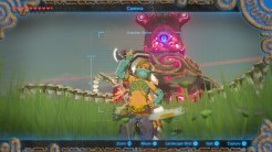 Legend of Zelda: Breath of the Wild selfie 1