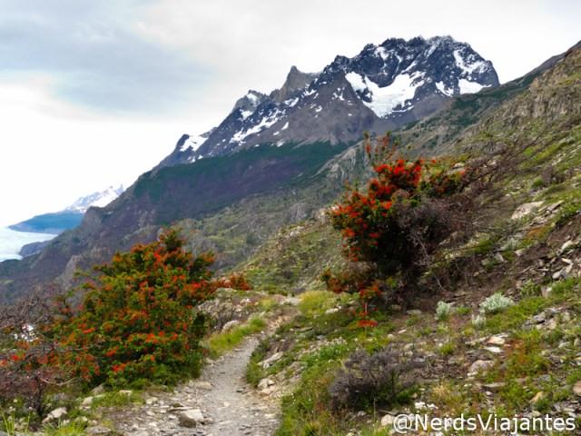 Belas montanhas ao lado da trilha para Glaciar Grey no parque Torres del Paine - Patagônia Chilena
