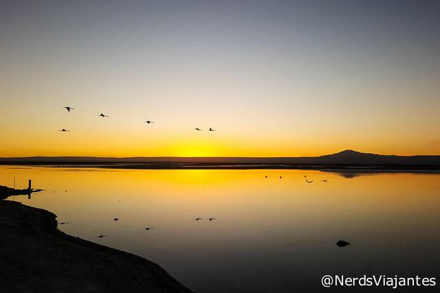 Entardecer na Laguna Chaxa - Atacama - Chile