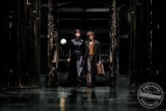 Fantastic Beasts: The Crimes of Grindelwald Katherine Waterston and Eddie Redmayne