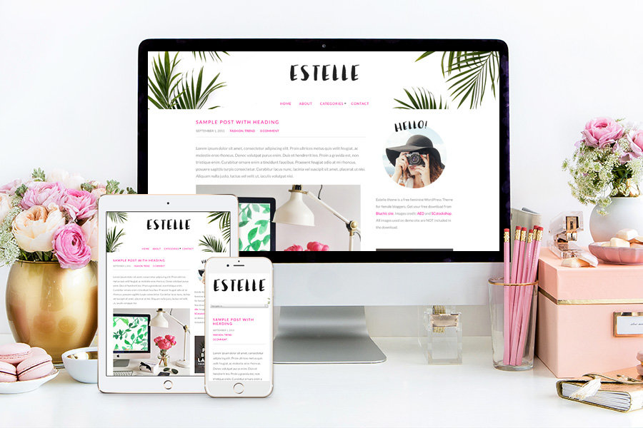 Estelle Bluchic Theme Free WordPress Theme