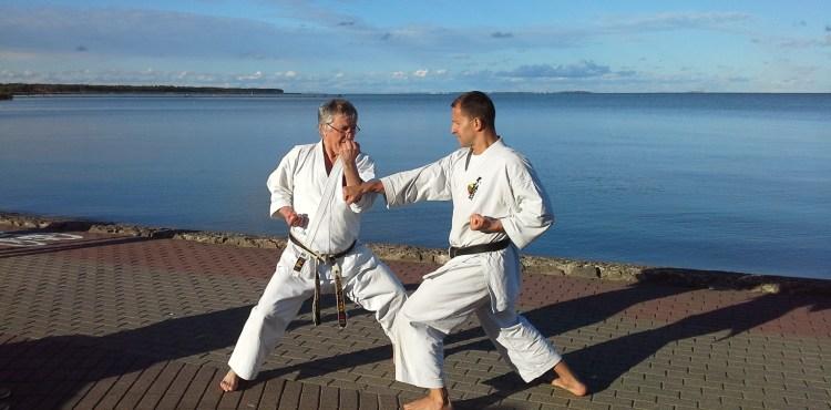 Karate Nida