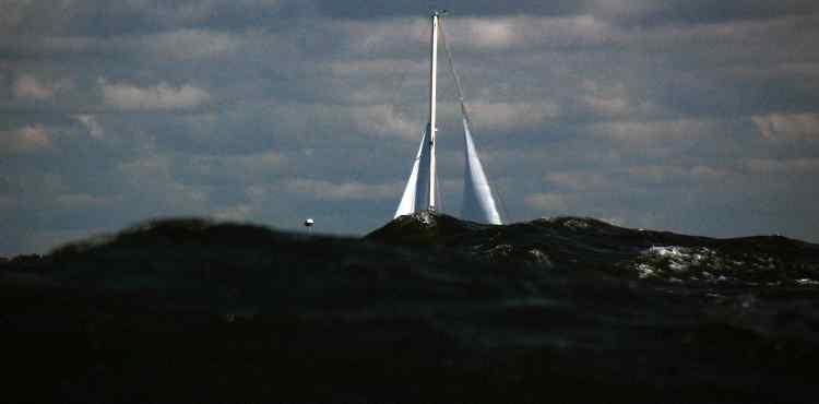 Kursiu mariu regata 50
