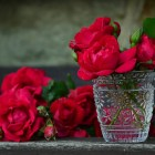 roses-red-roses-bouquet-of-roses-glass cocinar amor