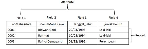 gambar database