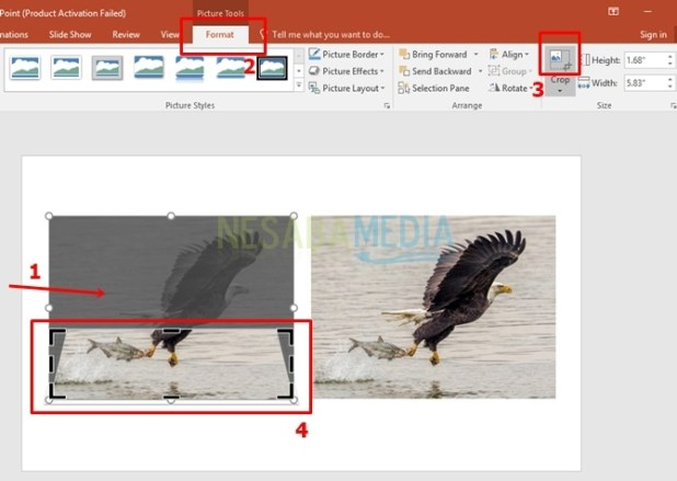 How to Make 3D Powerpoint