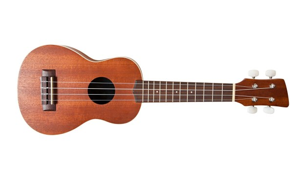 Type of stringed musical instrument