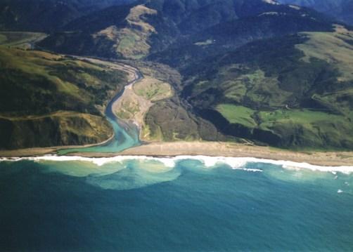 Estuary Ecosystem