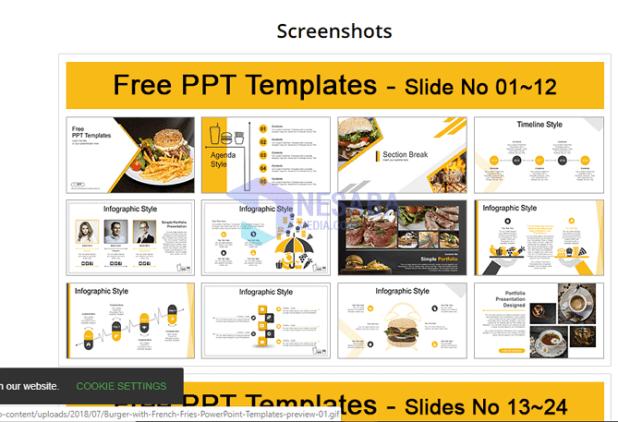 screenshot of PPT