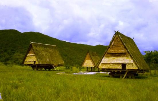 Rumah Adat Sulawesi Tengah : Rumah Adat Tambi