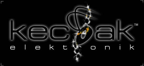 Kecoak Elektronik