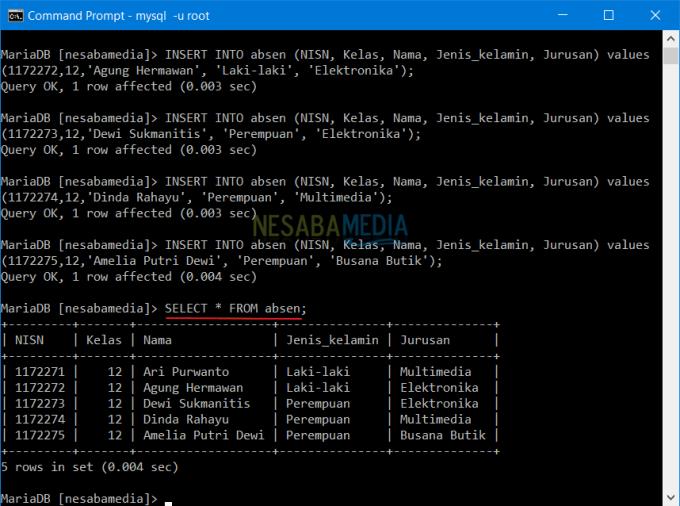 Membuat Database di CMD 10