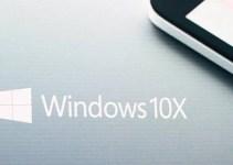 Windows 10X Drivers
