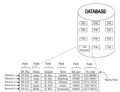Komponen Pada Jenjang Data