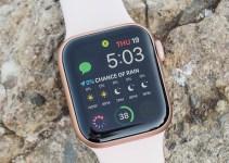 Penjualan Perangkat Smartwatch 2020