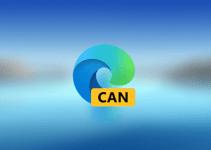 Dua Peningkatan Fitur Baru Hadir di Browser Edge Canary