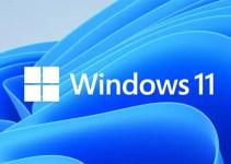 Aplikasi Asli Windows 11 Butuh Internet Saat Pertama Kali Dijalankan