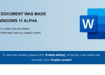 Malware Windows 11 Alpha Mengancam Para Pelaku Bisnis