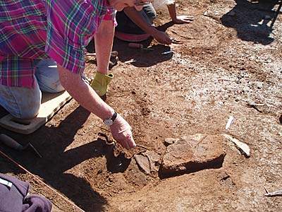 The third luckiest digger Anne reveals another spread of large decorated Grooved Ware.