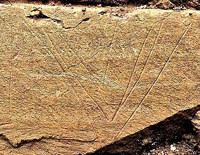 A section of the finely incised slab found in Structure Ten, showing the chevron designs.