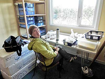 Alison takes a well-earned break from sorting the 'Smartfauna' bones.