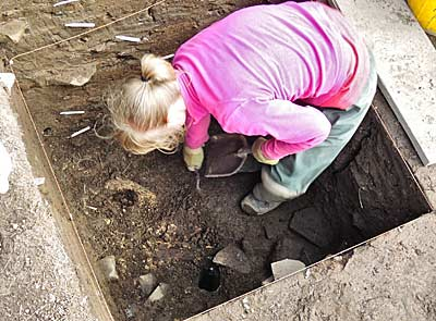 An aurochs or just a very large cow? Lauren carefully reveals the large horn core at the top of Trench T.