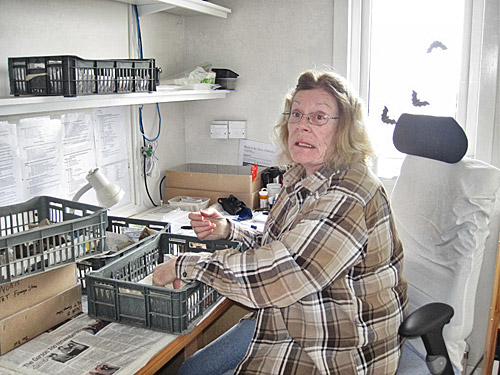 Martha Johnson, our in-house geologist, hard at work in her office.