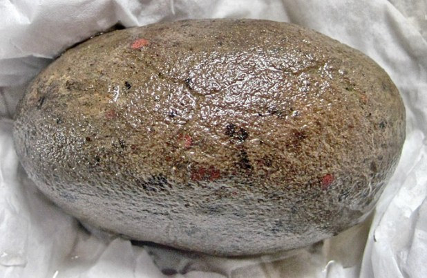 Spot the red dots of applied colour on this pebble-tool.