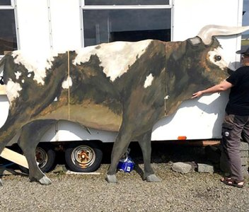 Neolithic bull putting in appearance at County Show