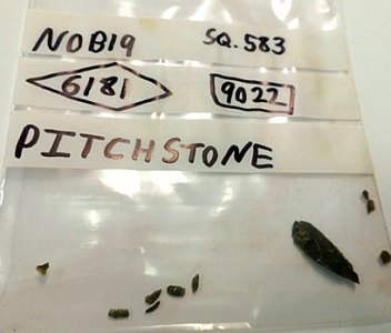 Debitage confirms pitchstone knapping in Structure Eight