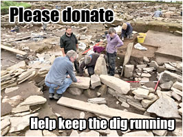 Please donate and help keep the Ness dig running