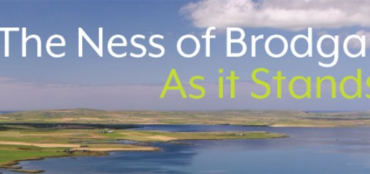 Ness of Brodgar As it Stands Cover