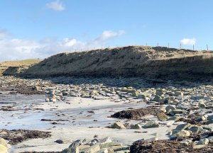 Eroding settlement mound to the west of Skara Brae. (Sigurd Towrie)