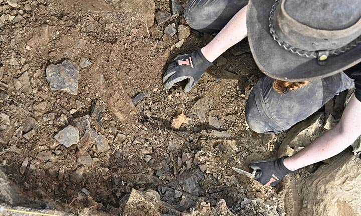 Ceiridwen excavating the cattle bone between Structure Five and the 'Great Wall' (Ole Thoenies)