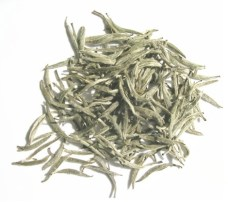 white tea photo
