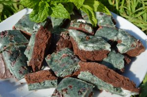 Mint Chocolate Spirulina Fudge - Vegan and Sweetened with Xylitol on a plate