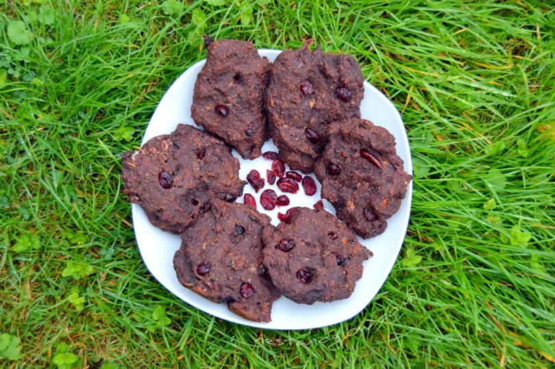 A plate of 4 Ingredient Chocolate Cranberry Cookies