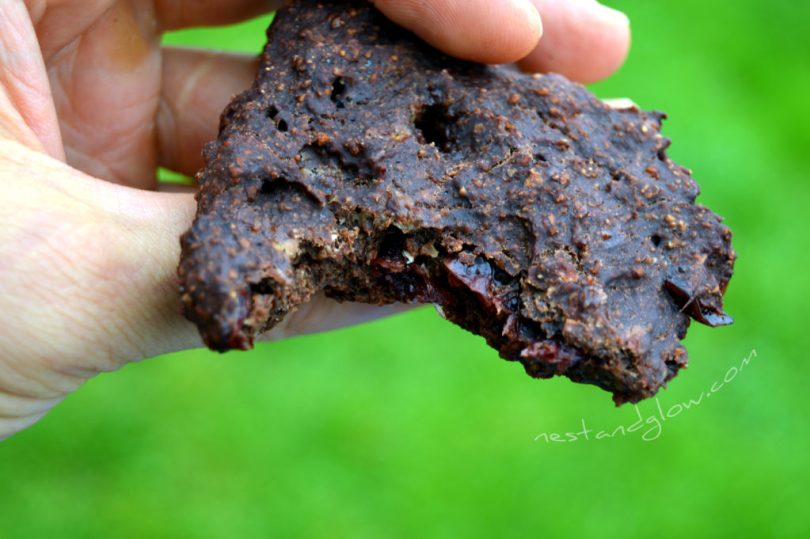 4 Ingredient Chocolate Cranberry Cookies Close Up