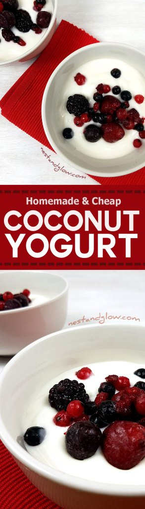Dairy-free vegan coconut yoghurt recipe