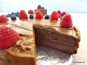 Chocolate cake with raw avocado frosting