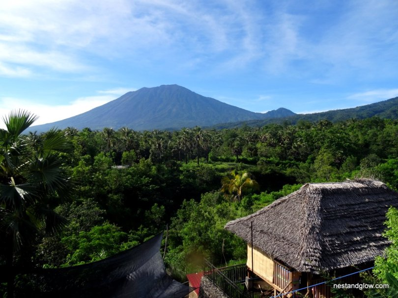 The view from East Bali Cashews