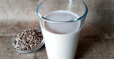 Sunflower Seed Vanilla Milk Recipe