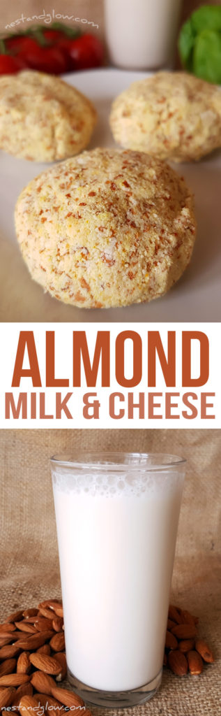 Almond Milk and Almond Pulp Cheese Recipes